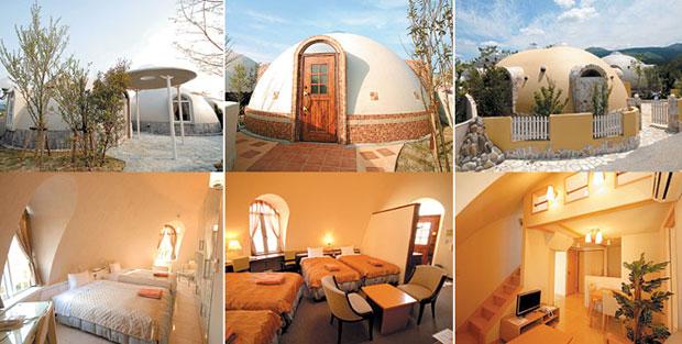 Dome House Petrovaraskolnikov